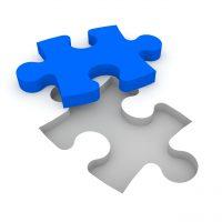 Puzzle, Karierre